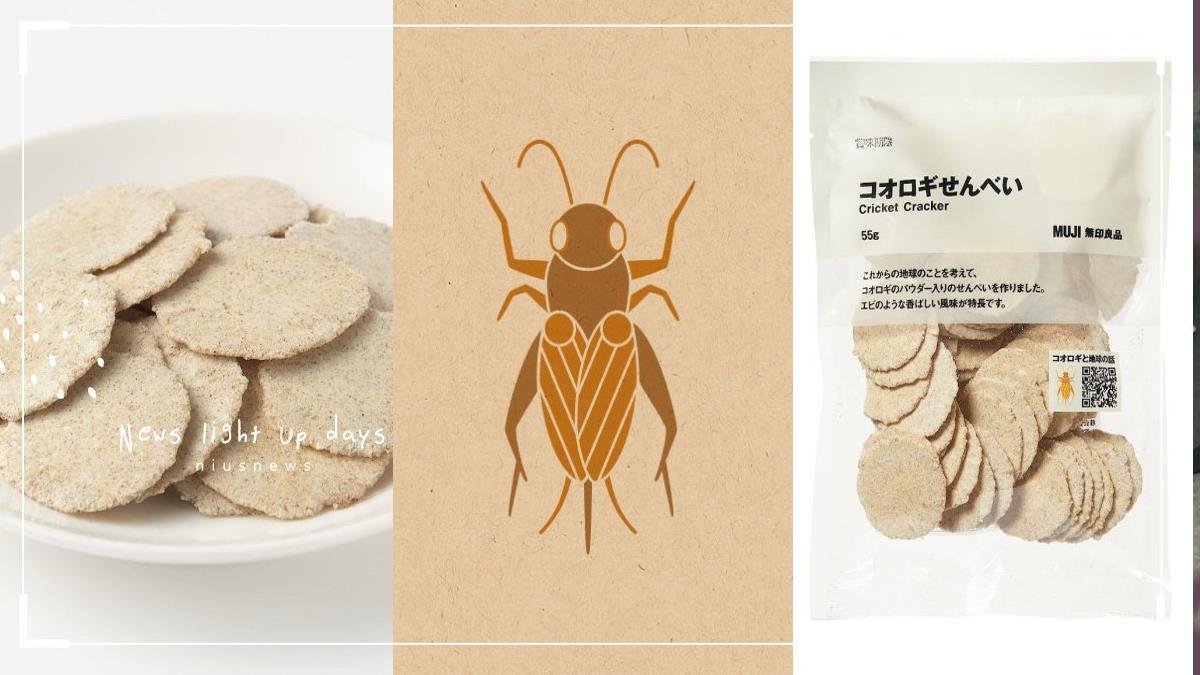 日本無印良品推出「蟋蟀仙貝」!據說味道像蝦餅,日網友崩潰:吃不下去啦