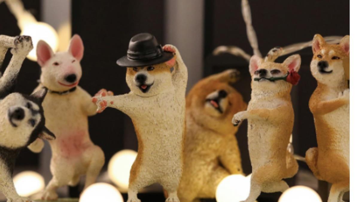 跟著狗狗們動茲動!萌狗變身「舞蹈大師扭蛋」,跟國標吉娃娃、街舞二哈來場國際尬舞大賽吧~