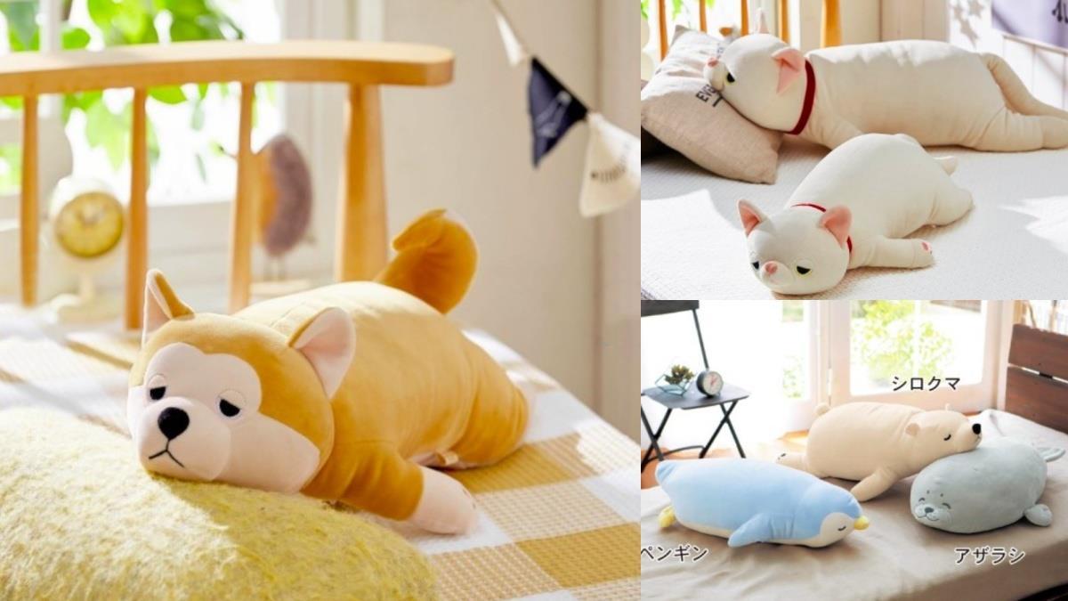 有了它完全不想出門!日牌超Q「動物趴睡抱枕」,呆萌口愛模樣彷彿能聽到貓咪的呼嚕聲~