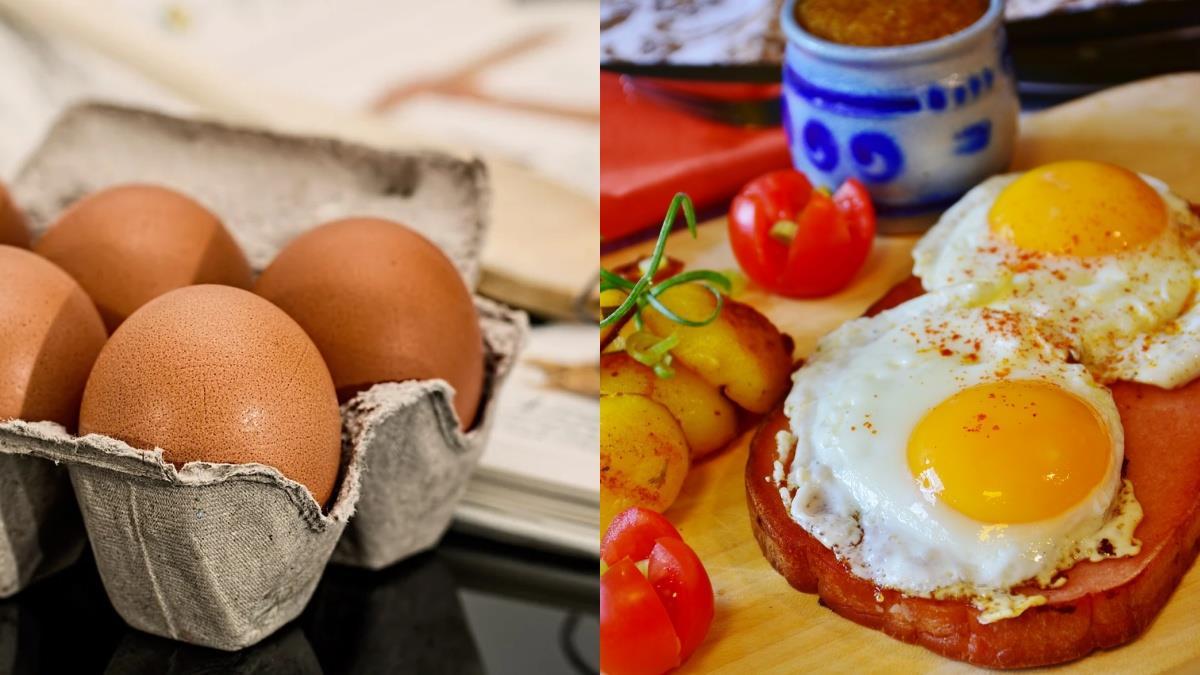 雞蛋知識小學堂開課喇!三個你不知道的「雞蛋的秘密」,瘦身關鍵就是「煮法」~