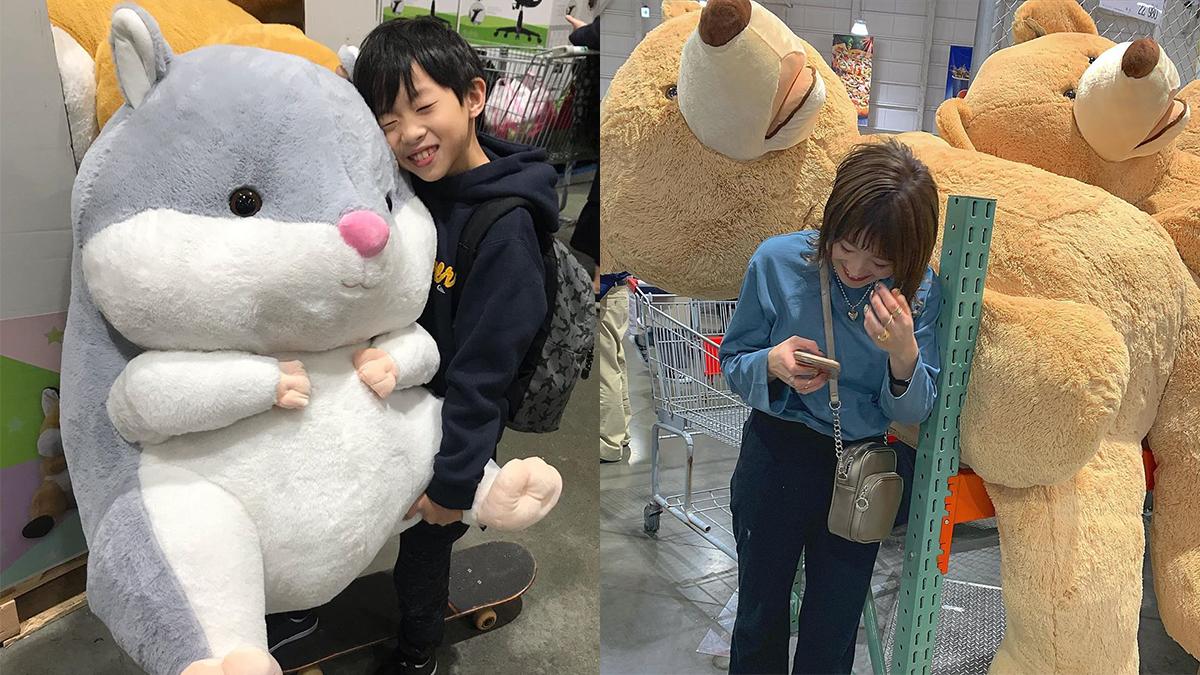帶回家跟男友爭寵!棉花糖系列「超巨大動物娃娃」點點名,這些肚肚搓它一整天都沒問題R~