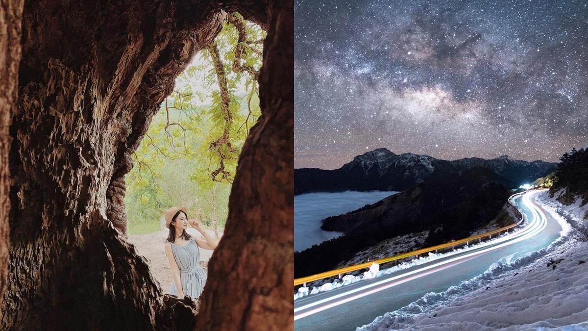 今年最火紅的樹洞就是它!《2020南投秘境首選TOP3》,來去離銀河最近的地方跟星星來場浪漫約會❤