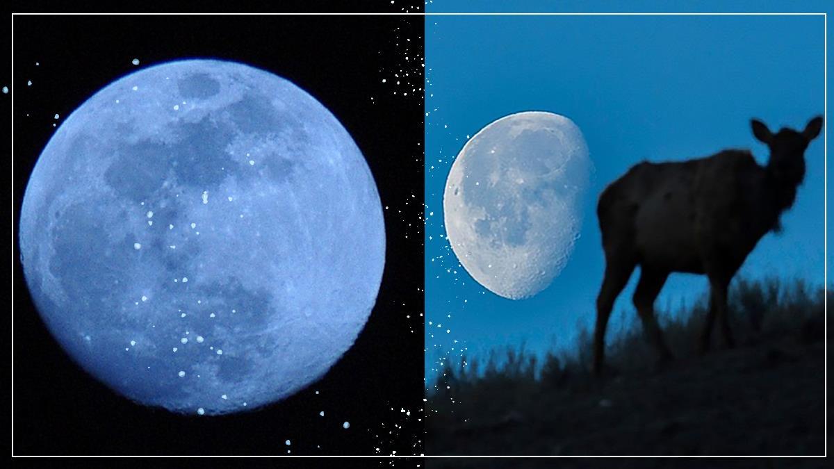 錯過再等2~3年!限定魔幻「藍色月亮」將在這天登場,只要用肉眼就能享受浪漫天文奇景~