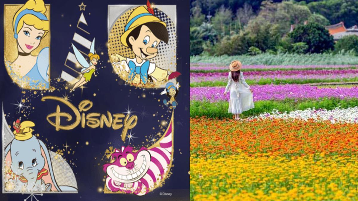 【十一月旅遊活動月曆】全台十一月份活動總整理