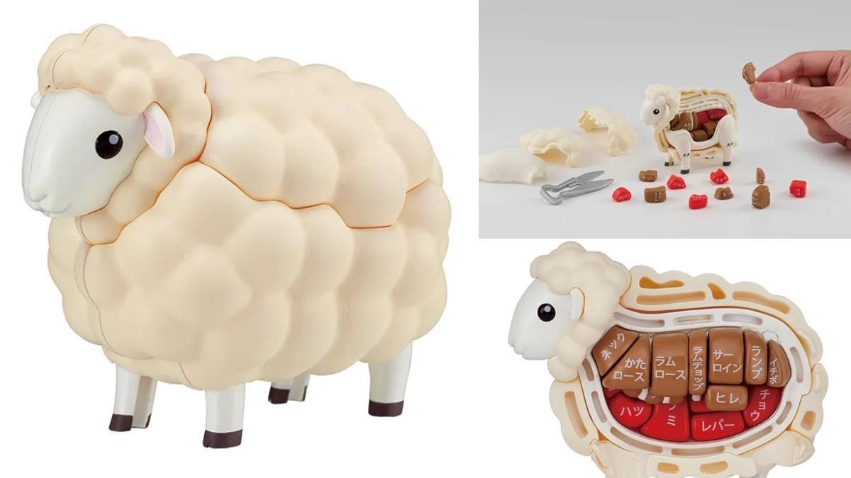 對決羊肉店老闆!日本超擬真「分解羊咩咩」立體拼圖,羊的內部構造全都收、連剃毛儀式都有~