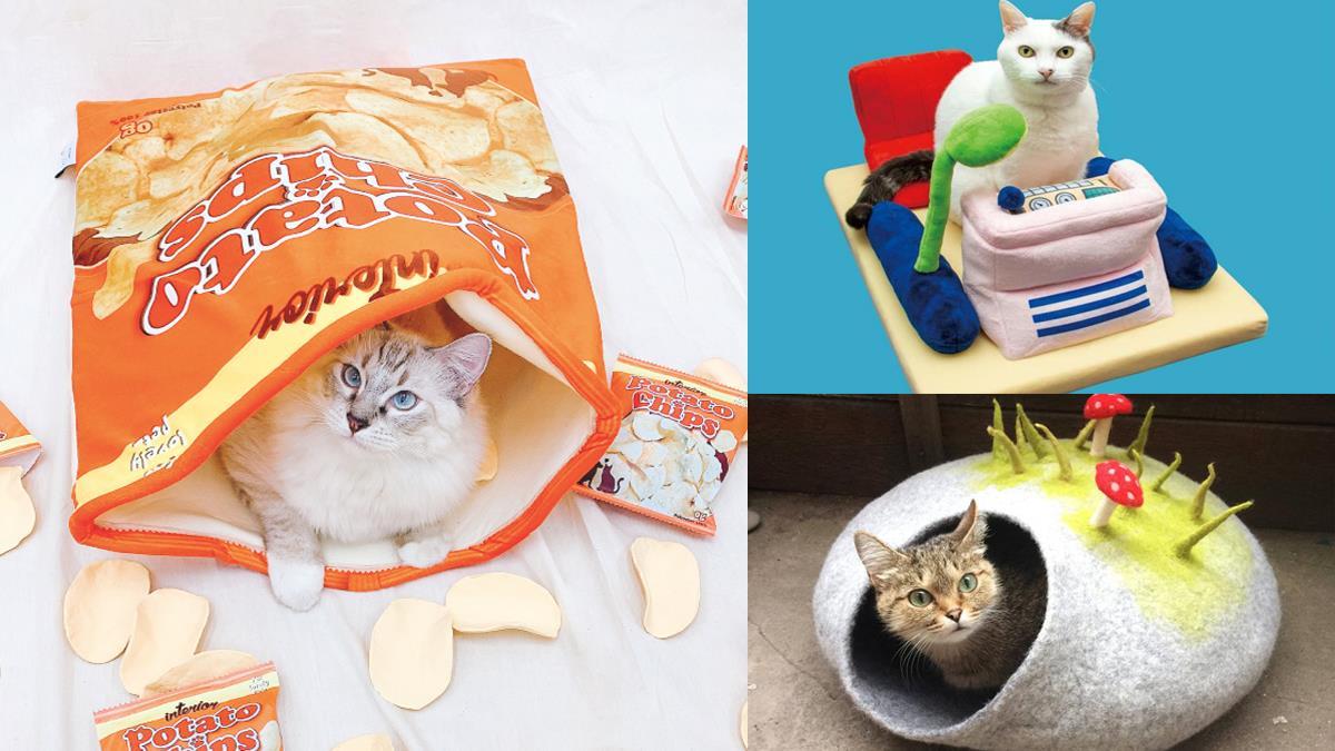 差一點就要把貓貓吃掉惹!熱門「4款造型寵物床」功用超乎想像,穿越時空的任務就交給主子幫忙惹!