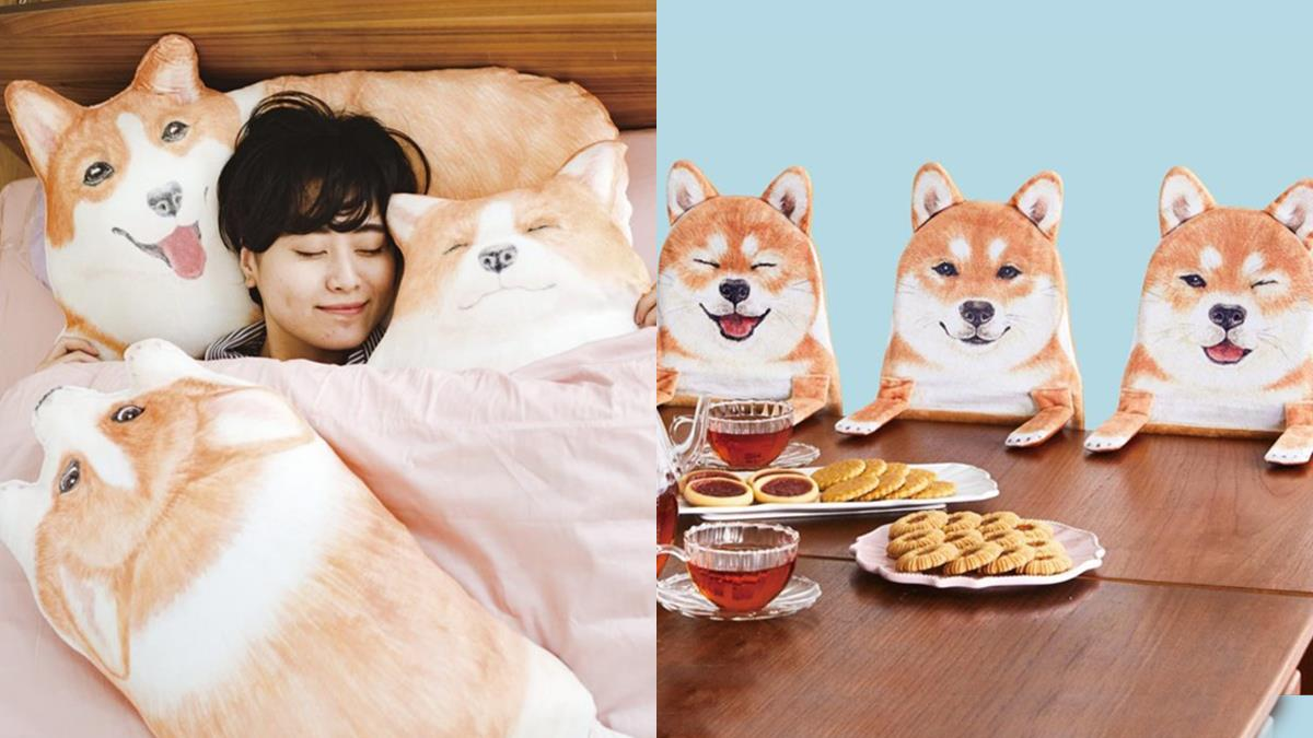 要回家了?柴柴們才不管你咧!5款超Q狗狗周邊商品,能被一堆胖胖柯基包圍最幸福惹♡