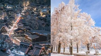 鳥居X白雪好想親眼看!「日本絕美雪景5選」推特萬人按讚:千鳥之淵的花吹雪完全是仙境~