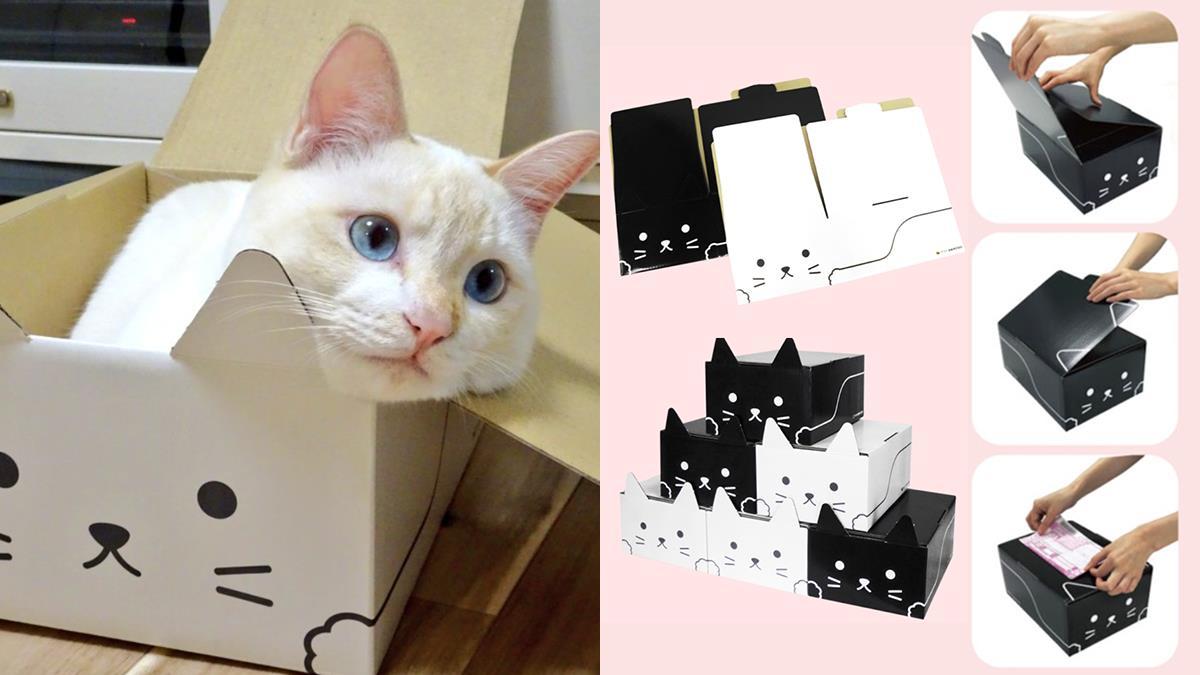 日本黑貓宅配推出超可愛貓紙箱!萌萌貓耳直擊貓奴心房