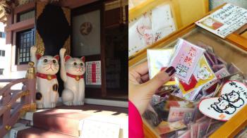 求姻緣還是求愛情升溫都可以!萌萌招財貓的戀愛聖地淺草「今戶神社」