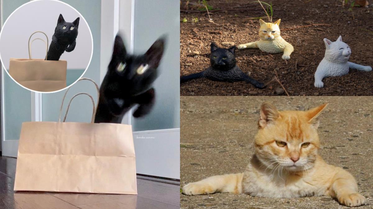 只有主子能超越主子!黏土大師又把「貓咪怪照變公仔」了,紙袋妖怪ㄎㄧㄤ到笑:這傢伙還翻白眼XD