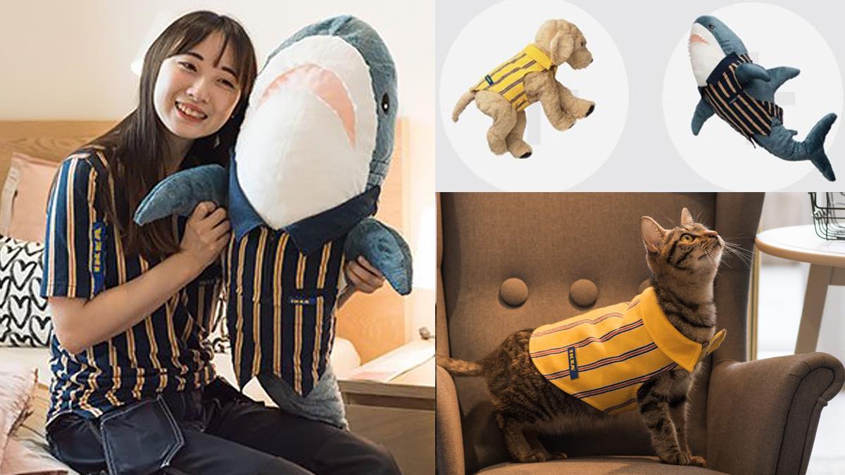 自己的罐罐自己打工賺!IKEA Q萌「寵物用員工制服」超稀有販售,限定3天、只有一個方法能獲得!
