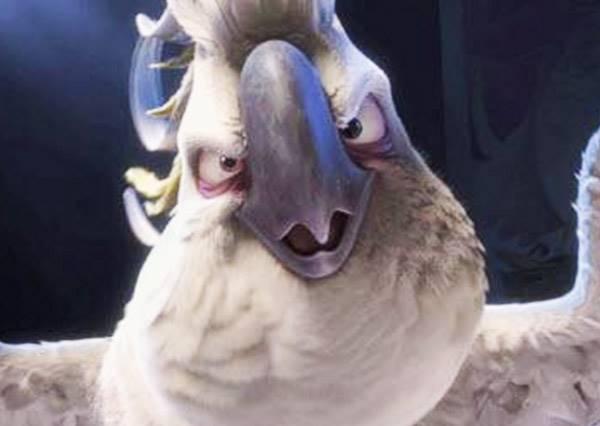 主人辛苦才把杯子塔排好,結果這隻鸚鵡走過去一秒讓人類知道誰才是老大!