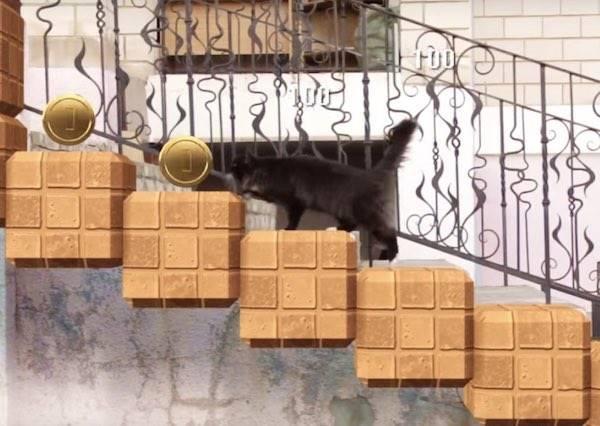 動畫師把愛貓升級成超級瑪莉喵~看喵前揮壞香菇後踩討厭烏龜,還有一個都不能漏的金幣!