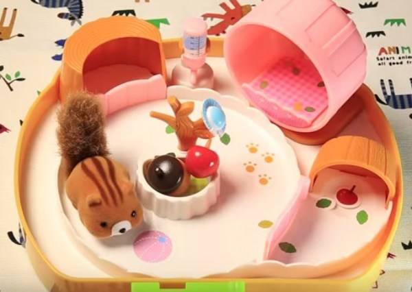 松鼠小屋-想不想養隻小松鼠呢?