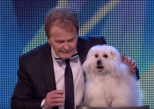 一隻名叫溫蒂的狗開口講!人!話!觀眾評審原先不看好,接著驚訝到急打電話告訴親友!