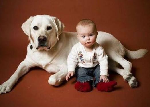 如果你發現你家小孩在學狗狗做這個動作,再不阻止他就要吐了!