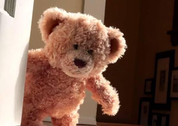 《熊麻吉》溫馨真人版!泰迪熊迎接小主人的影片,會讓你想回家擁抱那些玩偶