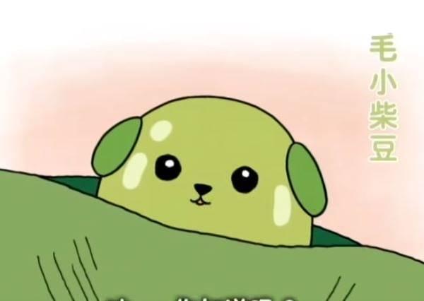 「袋鼠的袋袋其實㊙㊙唷!」像狗但是住在豌豆莢裡的「小柴豆」,療癒還要來教人長知識
