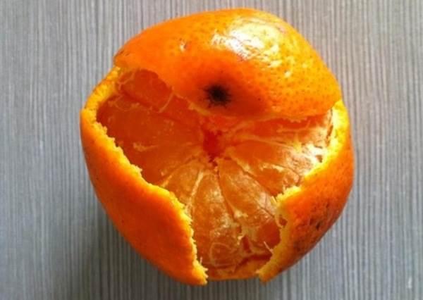 討厭苦苦的味道!一個步驟教你剝好橘子又不帶纖維