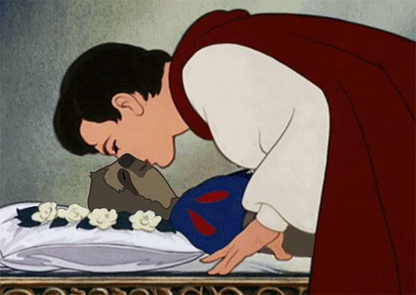 影音/樹懶界的7位迪士尼公主,穿上蓬蓬裙依舊無違和感!