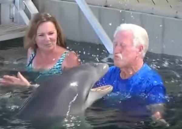 老爺爺找海豚討抱抱卻被吐口水...結果他就做出比「做鬼臉」還幼稚的行為,讓大家徹底笑歪了!