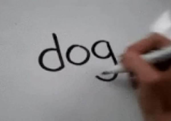 畫畫有障礙? 這次只要會寫英文「DOG」,就能畫出專業級的可愛狗狗!
