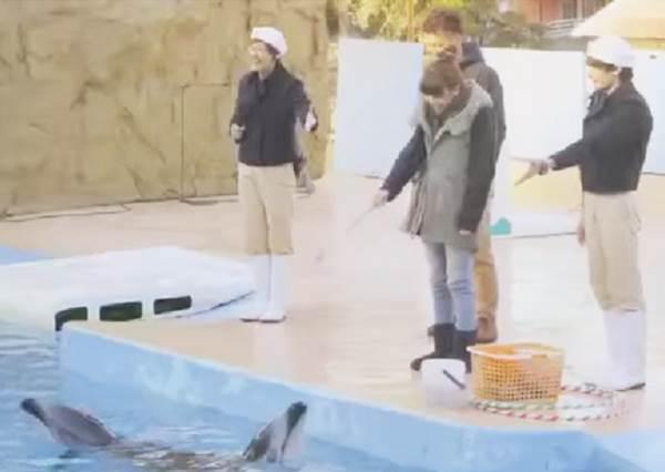 人生起碼要有一件值得說嘴的浪漫事,這個男生選在水族館給女友驚喜求婚!
