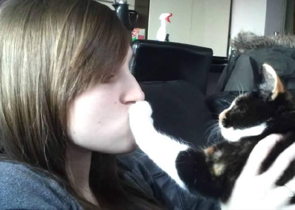 人類你們夠囉!對於主人予求予取的索吻,貓狗決定開始反抗人類的「不要親親」拉鋸戰!