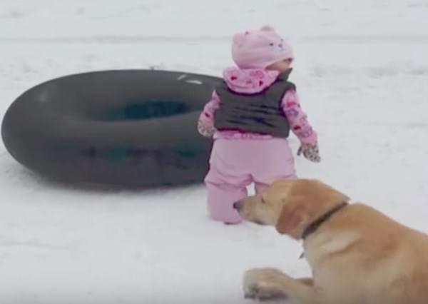 爸媽明明想紀錄女兒初次滑雪的珍貴體驗,沒想到意外見證狗狗有多愛搶鏡!?
