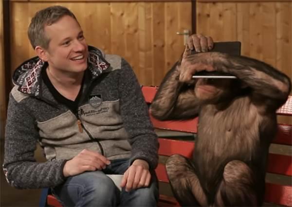 大家都知道猩猩很聰明,那你猜猜牠們看魔術是不是也會上當呢!?