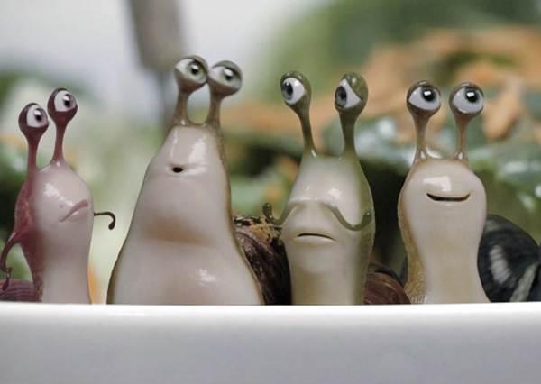 這群蝸牛誤闖廚房,完全沒想到牠們即將迎接《絕命終結站》的驚險考驗…
