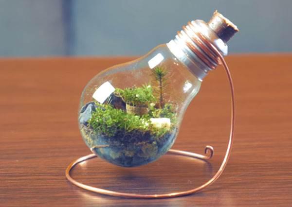 這樣玩才對得起愛迪生!看似困難重重的「燈泡盆栽」,根本簡單到可以變成人人都會做的國民工藝了~