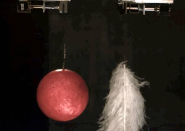 羽毛、保齡球誰會先掉落?全球最大真空實驗室告訴你意想不到的最終結果