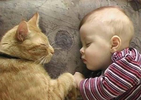 Baby愛貓成癡從小就養成,看到喵星人的反應也太可愛惹吧!