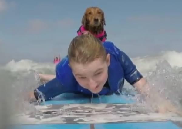 坐在輪椅上的姐妹花居然也能一圓衝浪夢,身後這隻狗狗到底有多厲害?