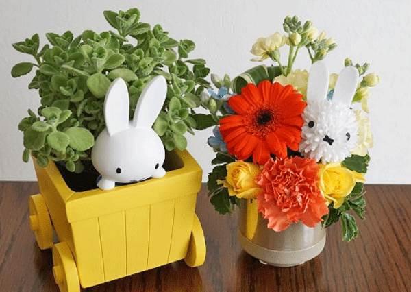 可以永遠不要枯萎嗎?日本超萌「米飛兔花束」,用這告白的成功率一定超高!