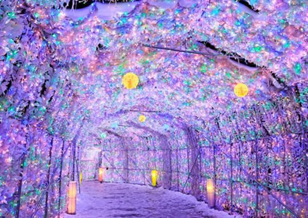 去玩也要挑良辰吉時?!北海道景點特輯:#3放眼望去整片山竟都是浪漫的粉嫩色!