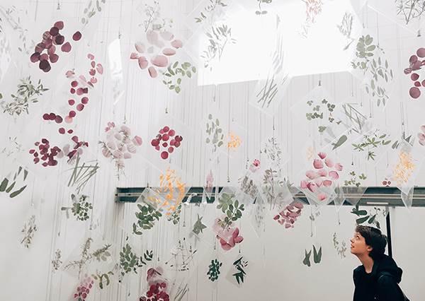 拿整束花拍照已經落伍了?日本最新花草茶店是這間,「透明壓花板」簡直美到想收藏!