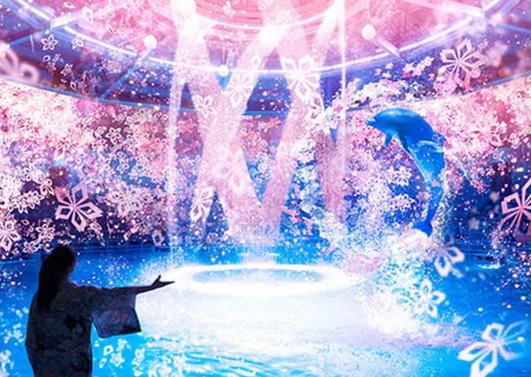 讓你粉紅到最徹底!日本水族館春季限定「粉紅海底世界」,可以和海豚一起賞櫻?!