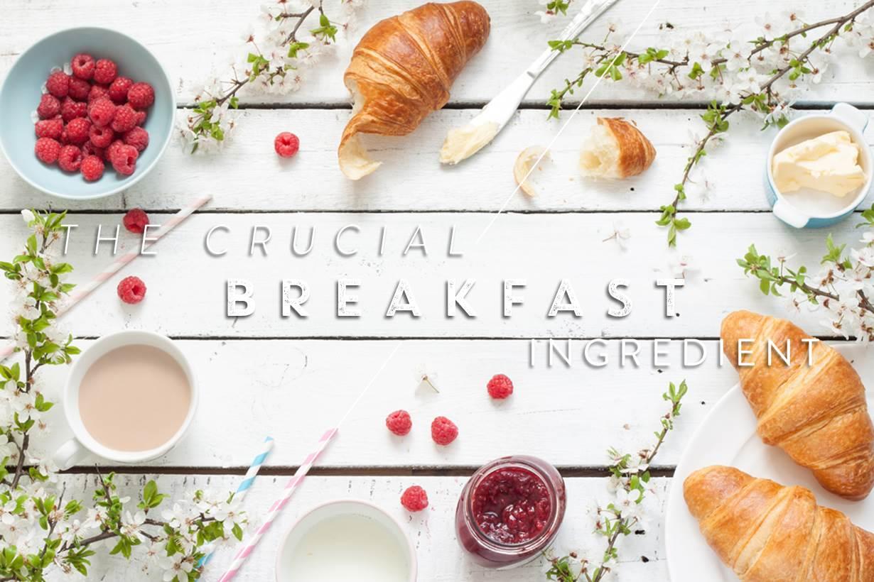 不但要吃還要吃得對!早餐吃「這個成份」,身體代謝變好更易瘦