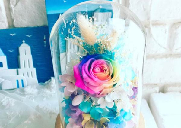 貝兒的瓶中花竟然有出彩虹版?超浪漫彩虹玫瑰花,拿這束和姐告白不答應都難啊!