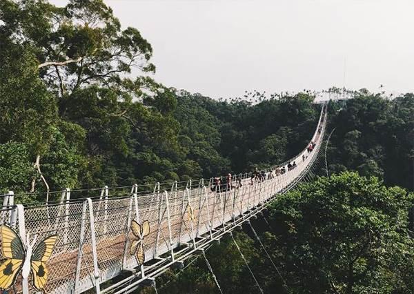 從上帝視角看台灣!「全台8座最美天空步道」:走在花蓮步道上還可俯瞰太平洋!