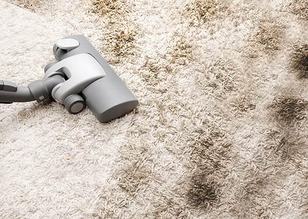 地毯髒了怎麼辦?找出家裡的這三種材料,就能快速去除髒汙再也不怕染色