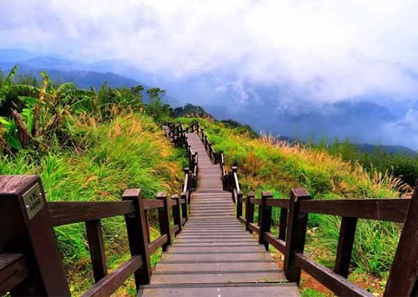 【踏青秘境】台灣6條秘境步道,隨便拍都像仙女下凡!