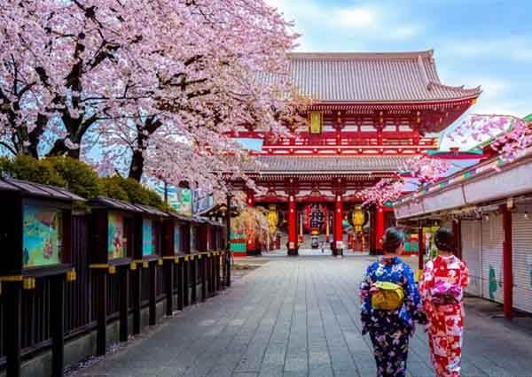 逛到腿斷還不夠!不用辛苦爬文就能get東京旅遊行程懶人包,人形燒絕對是淺草必吃第一名