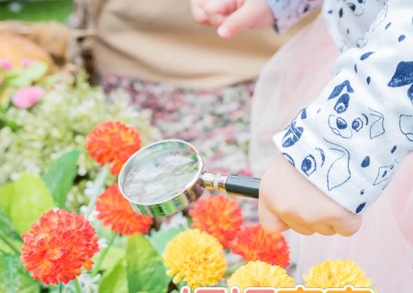 認識大自然的花花草草,就能更明白環境的重要性!愛護生態從小開始