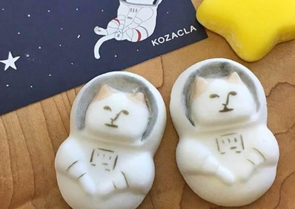 喵喵你是要漂浮回喵星球嗎?日本超夯「肥滋滋假正經太空貓棉花糖」,丟入咖啡中看他被融化哪裡有點壞!