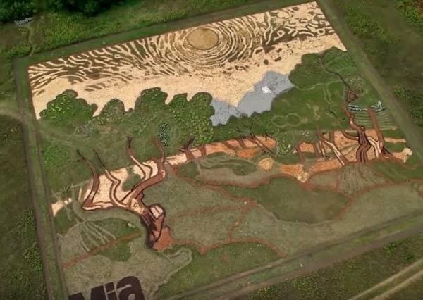 他花半年在這塊空地又是種植物、又是開墾,直到成果出爐,大家總算明白為何他叫田園藝術師!