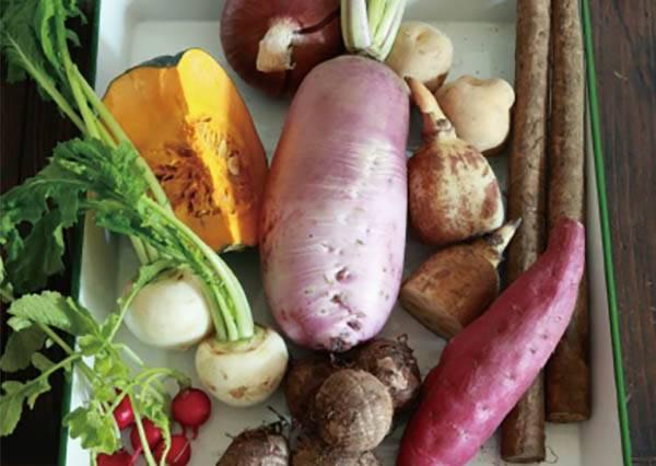 想調節身體不必看中醫,只要吃對當季蔬果就行了!尤其秋天要吃㊙㊙